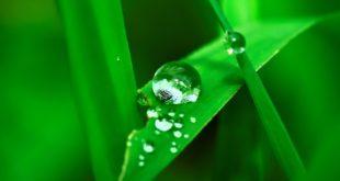 Centraline e programmatori per irrigazione a batteria