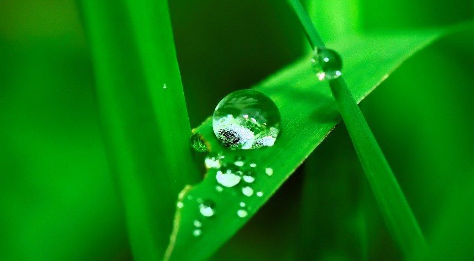 Centraline E Programmatori Per L Irrigazione A Batteria